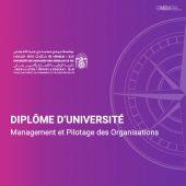 Diplôme d'université Management et Pilotage des Organisations - ENCGF