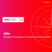 MBA en Management Stratégique et Intelligence Economique (MSIE) - EGE