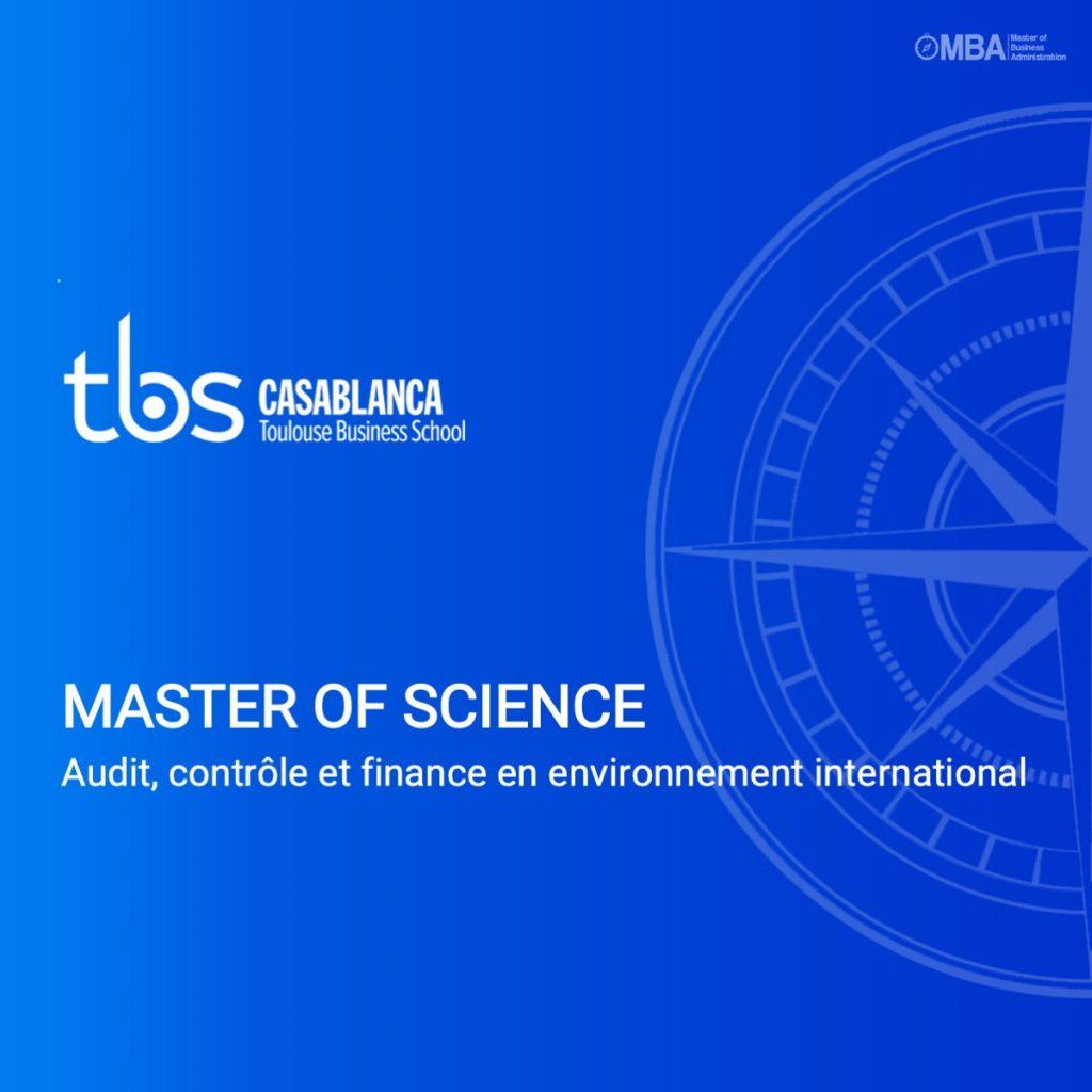 Master of science audit, controle et finance